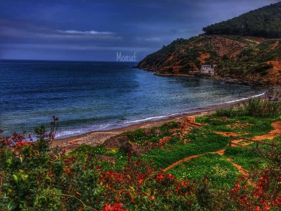 الصورة من سواحل بني سعيد بعدسة منصف