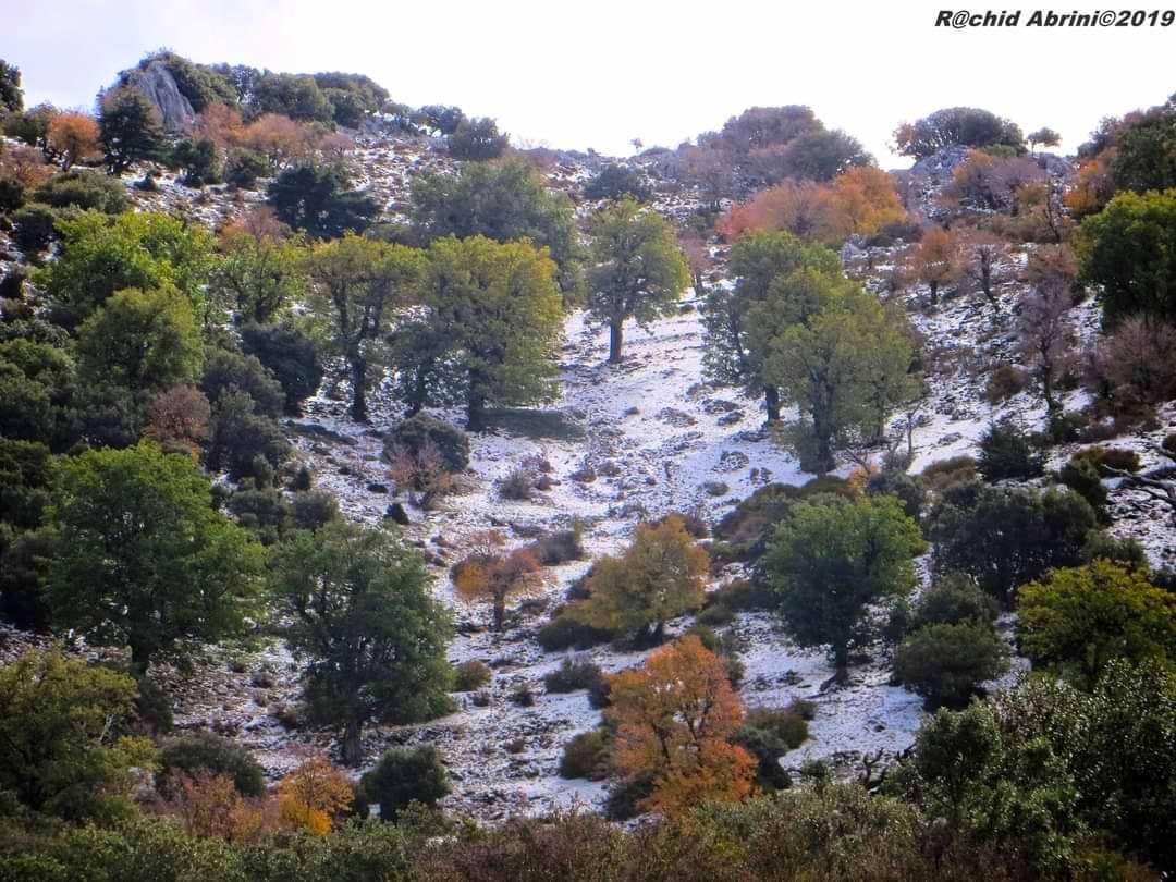 الصورة من جبل كلتي بالجزء التطواني من المنتزه الوطني لتلاسمطان