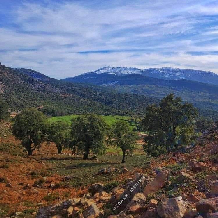 الصورة من جبل السوكنة
