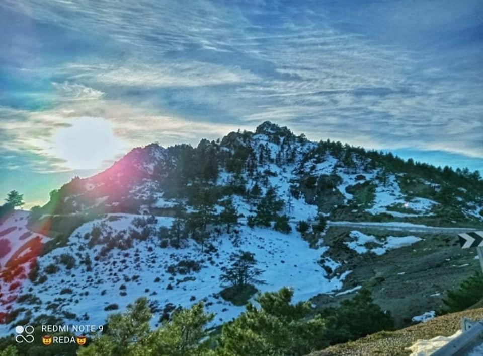 جبل بوزيد
