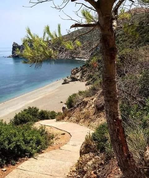 شاطئ الحجر الأصفر بواد لو