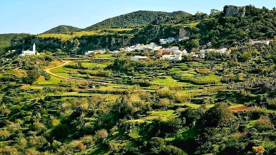 قرية السرور